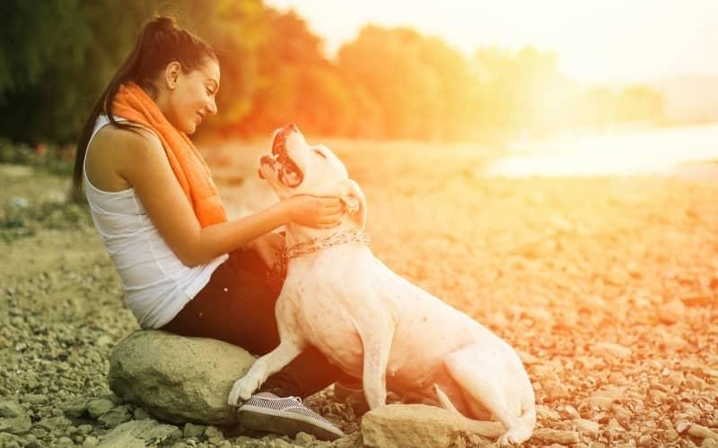 Dogo Argentino conpartiendo con su dueña