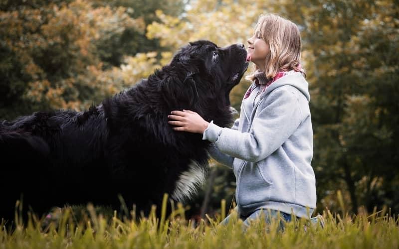 El Perro Terrenova con su mejor amiga