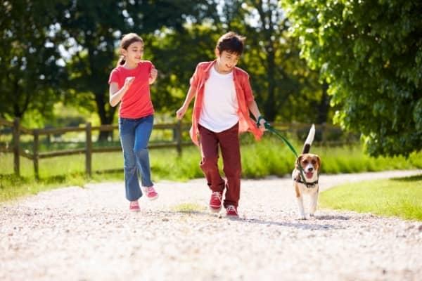 Perro con los niños corriendo