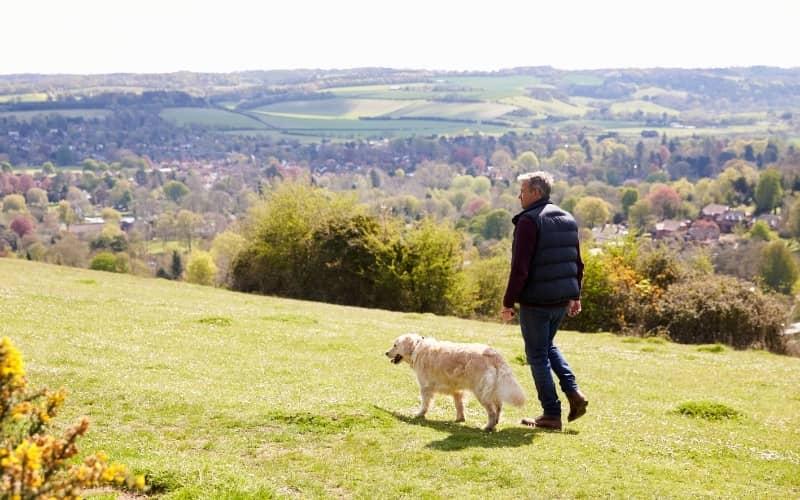 Un hombre caminando con un Golden Retriever