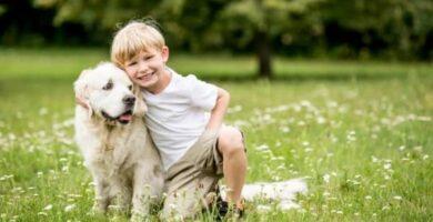 hacer feliz a tu perro